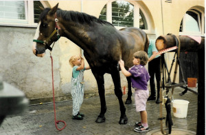 are also catered for in Hamburg. You will find many riding stables on the outskirts of the city and in the surrounding area.
